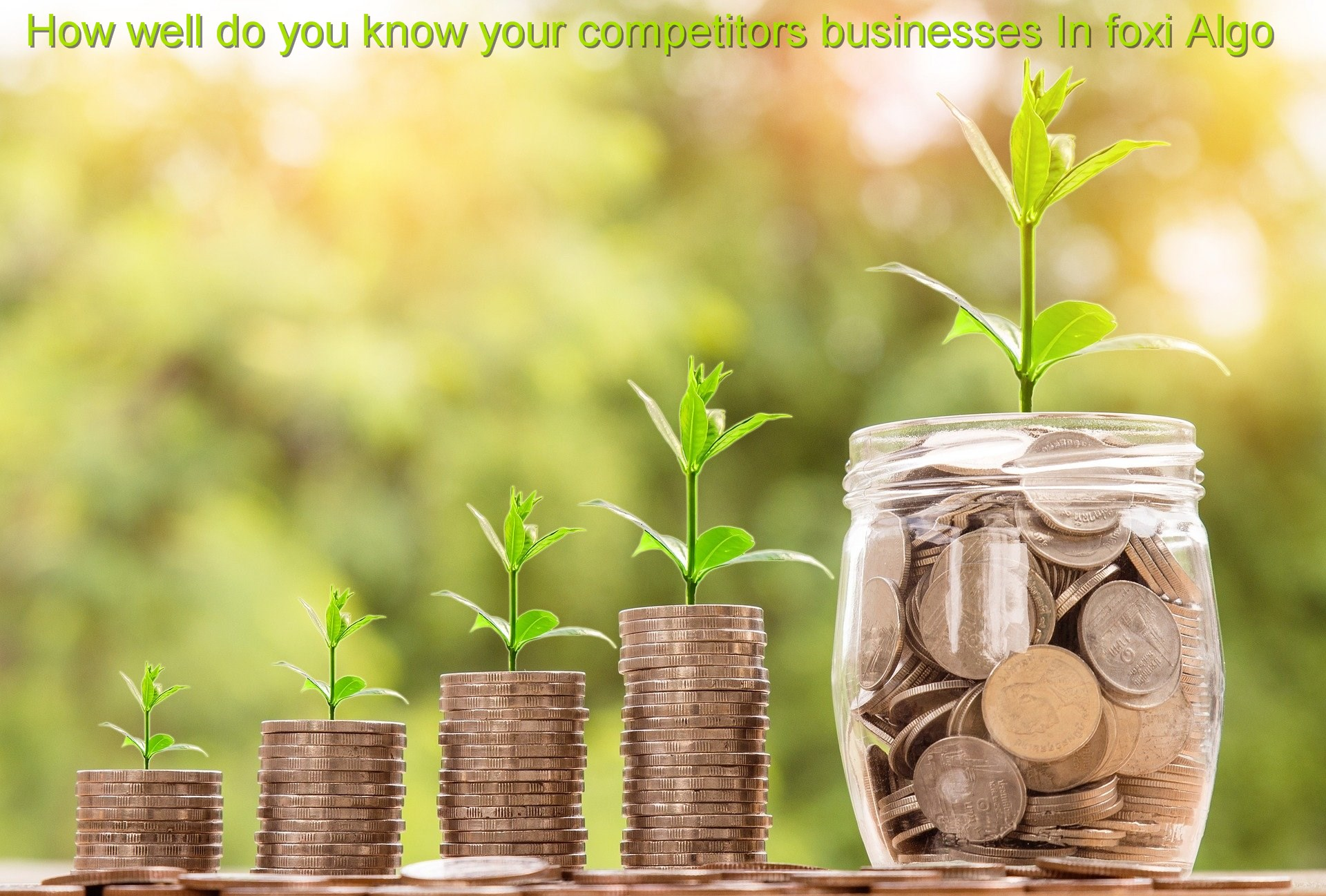 How well do you know your competitors businesses In foxi Algo